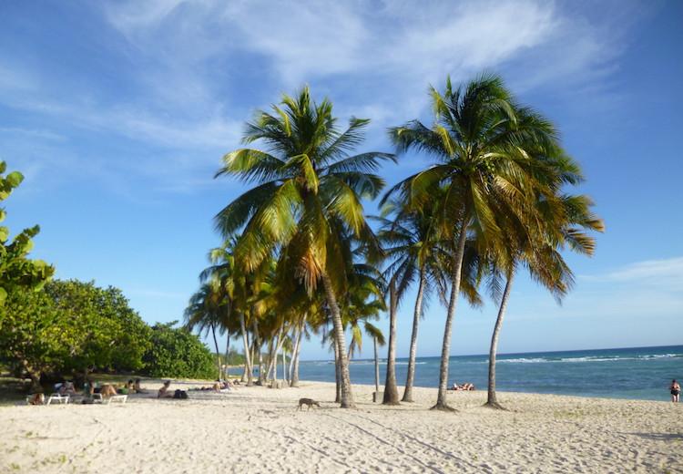 Playa Giron Image